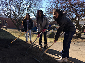 Three junior high students rake to create a garden